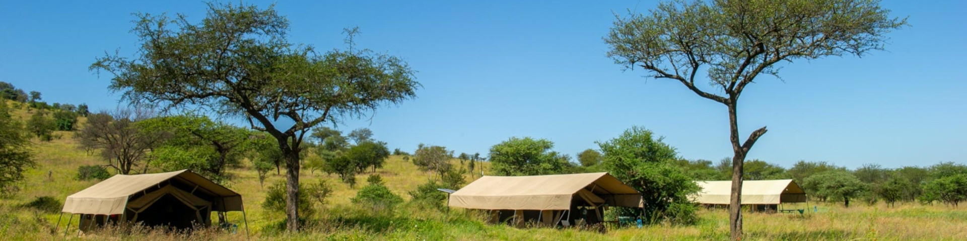 Kati Kati Camp - Central Serengeti - Tanzania