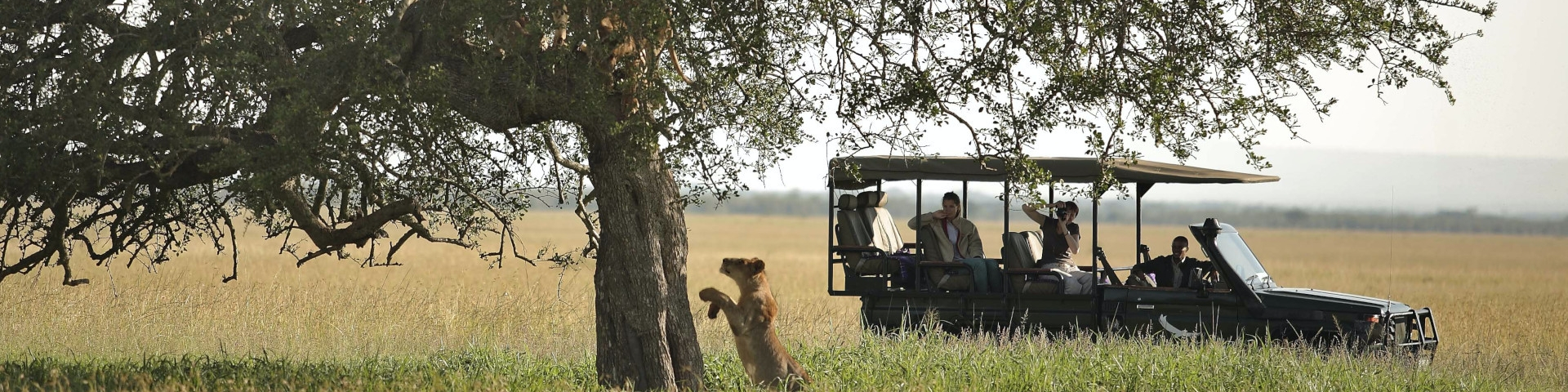 Africa Travel Guide Tanzania Serengeti National Park Game Drive