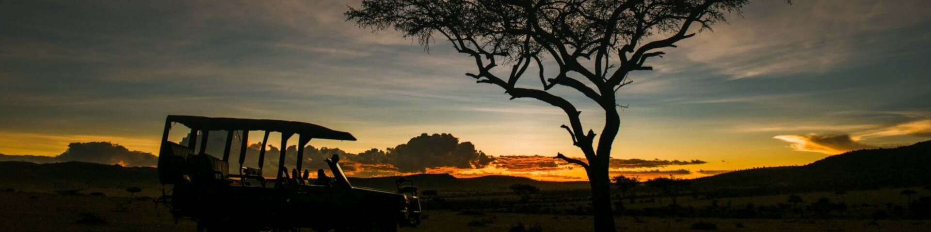 When to Visit Tanzania Night Drive in the Serengeti
