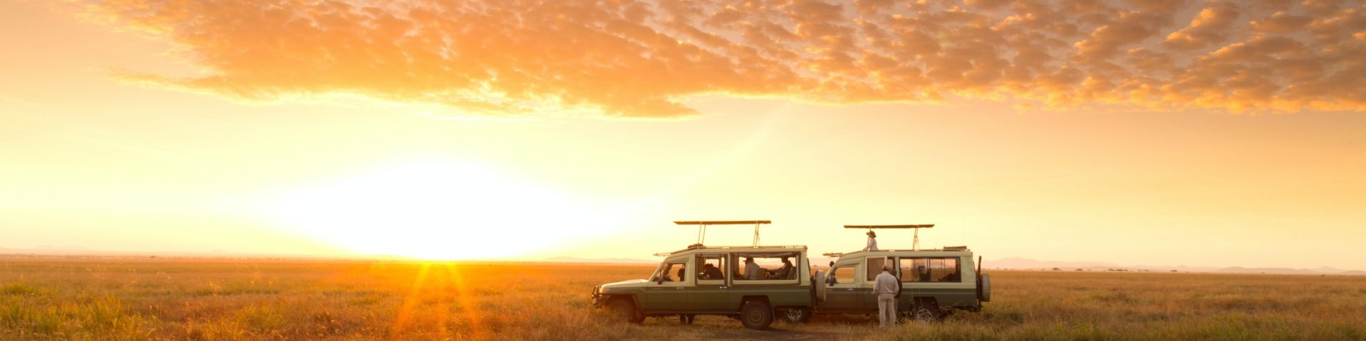How to avoid the crowds on a Serengeti safari Banner 2