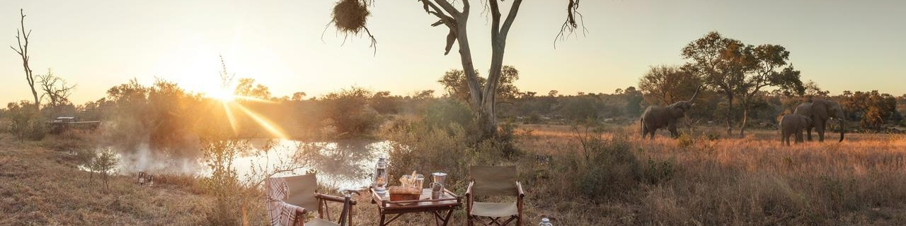 Sunrise Coffee Break Timbavati