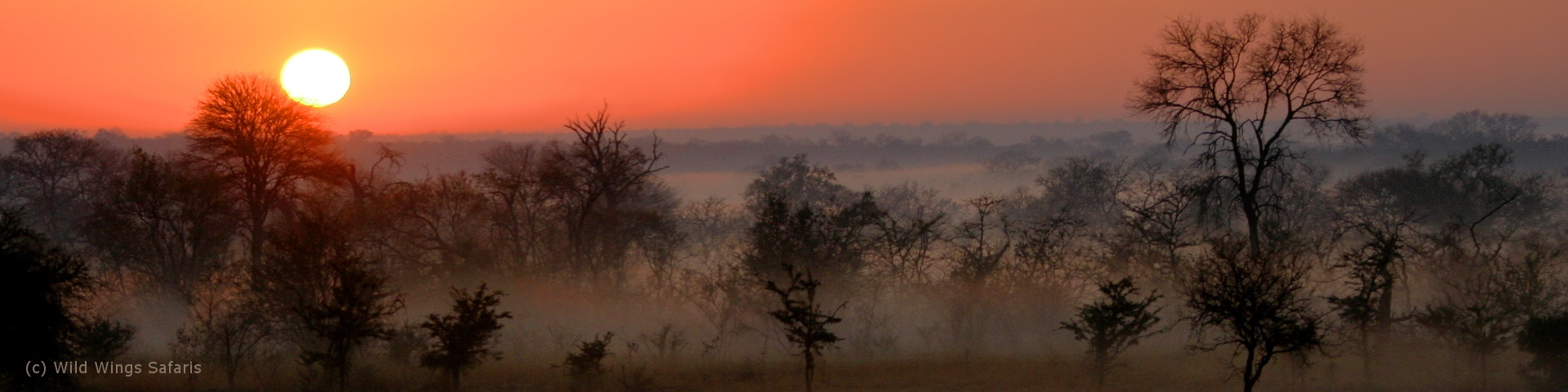 African Tours And Safaris Sunset