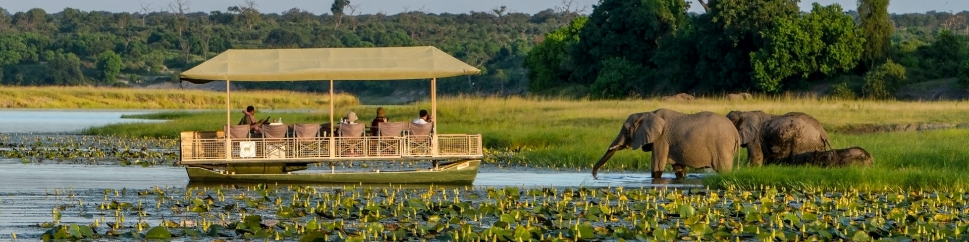 11 Day Botswana and Vic Falls Safari - Chobe River - Botswana