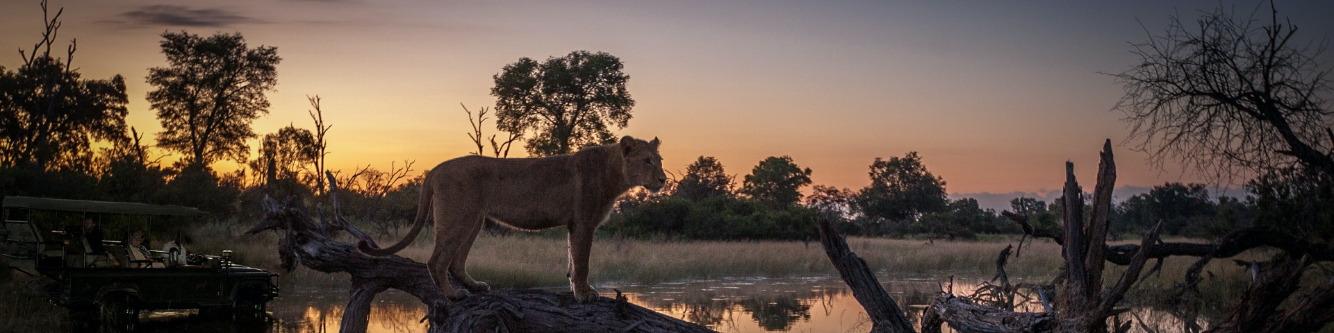 Tours and Safaris to Okavango Delta - Botswana