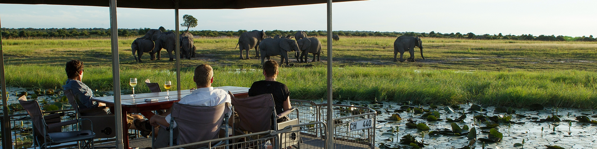 Chobe Game Lodge River Safari Elephant- banner