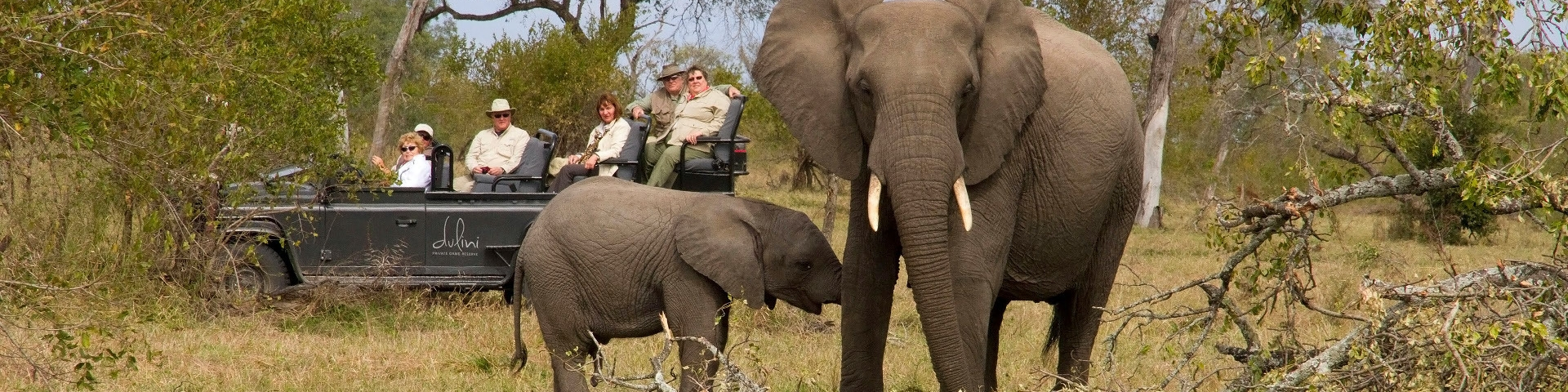 Difference Between Kruger Park and Private Reserves