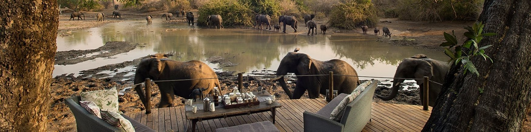 Mana Pools Kanga Camp - Zimbabwe